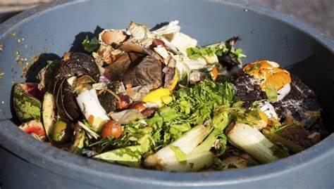 40% de la comida termina en la basura